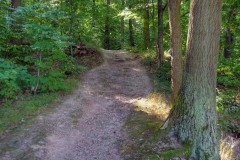 spessartweg1_05