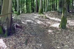 spessartweg1_30