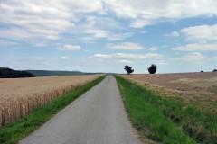 spessartweg1_49